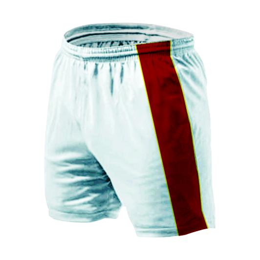 Panelled Zuco shorts - Joe
