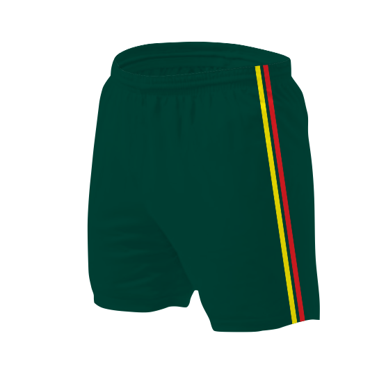 Panelled Zuco VB shorts - Menzi