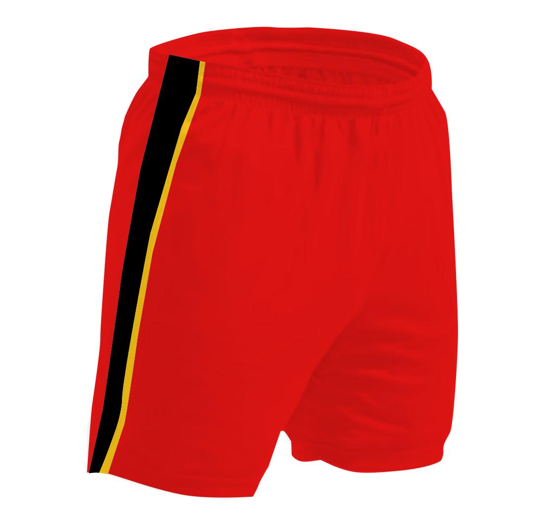 Panelled - Shorts - Jarred