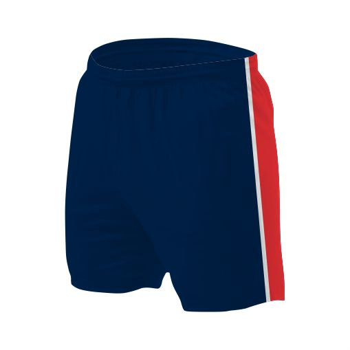 Panelled Zuco shorts - Nisha