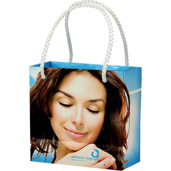 Mini Gift Bag With Ful Col (moq 500)