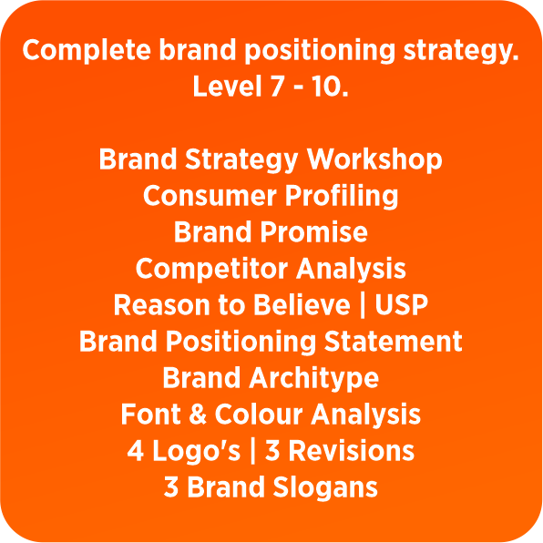 BRAND STRATEGY PACKAGES | Brand In A Box - New Brand - 2