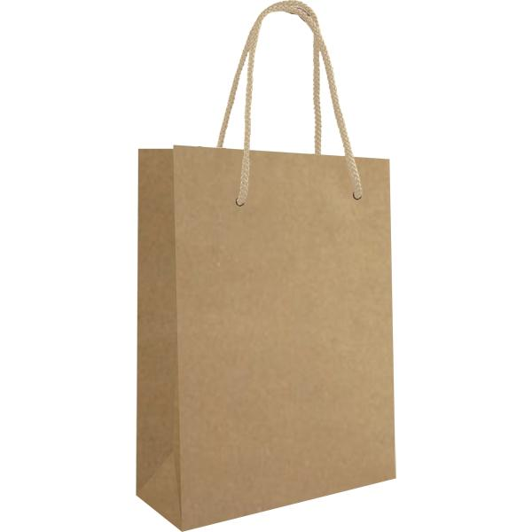 Knick Knack Gift Bag With 1 Col