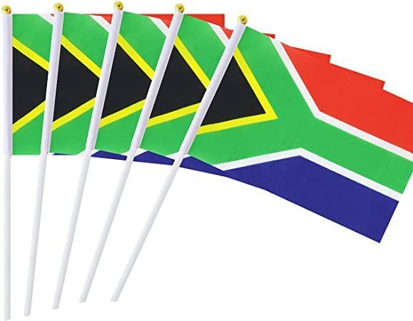 Waving Flag - Digital W/i Plastic Stick