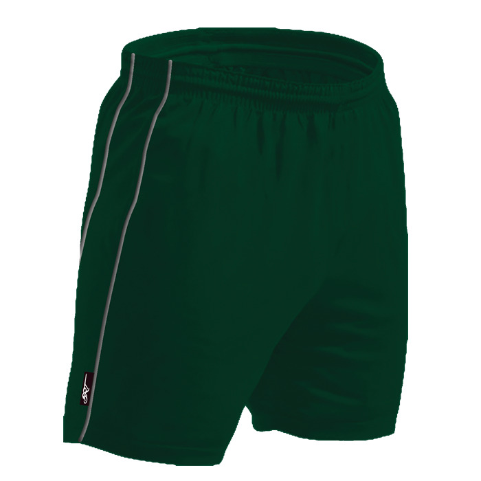 Brt Reflect Shorts (brt302)